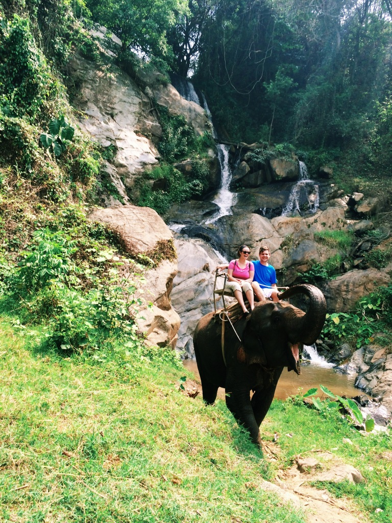 An elephant and a waterfall