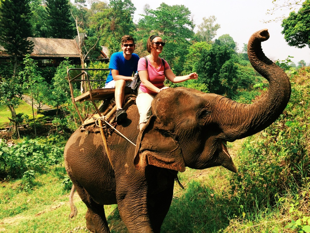 Riding the elephant