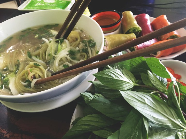 Phở [noodle soup] & phở rolls