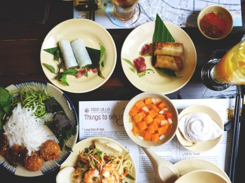 Ngon Villa spring rolls and pho rolls