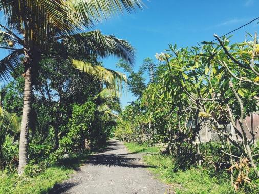 The journeys of Nusa Penida