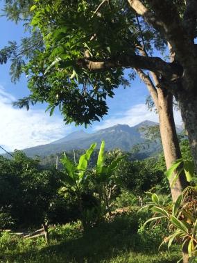 Mt Rinjani