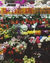 Tiong Bahru Flowers