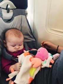 FlyeBaby seat