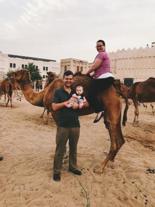 Riding a Qatar Camel